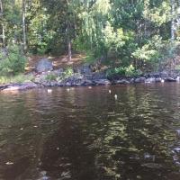 Kanutour in Schweden_148