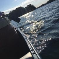 Kanutour in Schweden_171