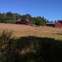 Kanutour in Schweden_283
