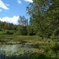 Kanutour in Schweden_413