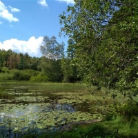 Kanutour in Schweden_415